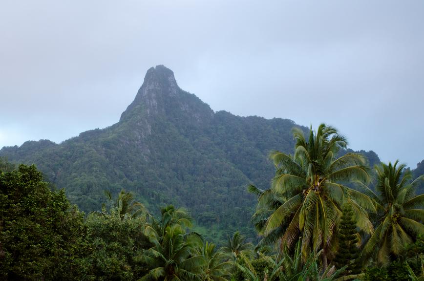 Rarotonga Island E51AGY DX News