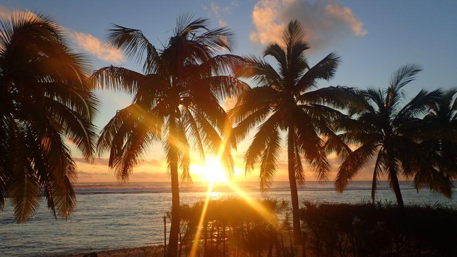 Rarotonga Island E51DWC South Cook Islands Picture