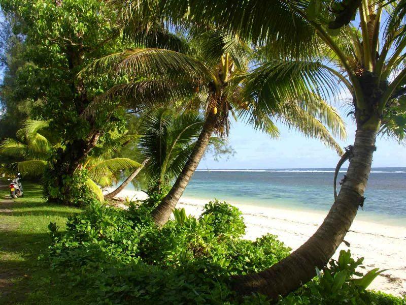 Rarotonga Island E51J