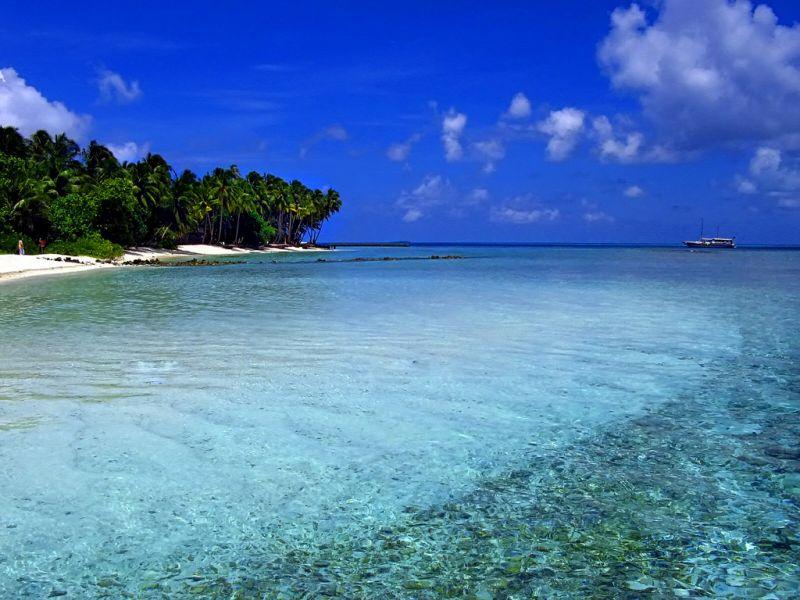 Остров Сафари (Мушимасгали), Мушимас Мигили риф, Алиф Алиф атолл, Мальдивские острова 8Q7HW