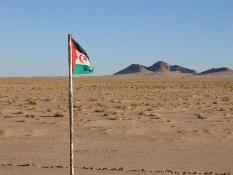Арабская Демократическая Республика Сахрави S0WP S0WP/M