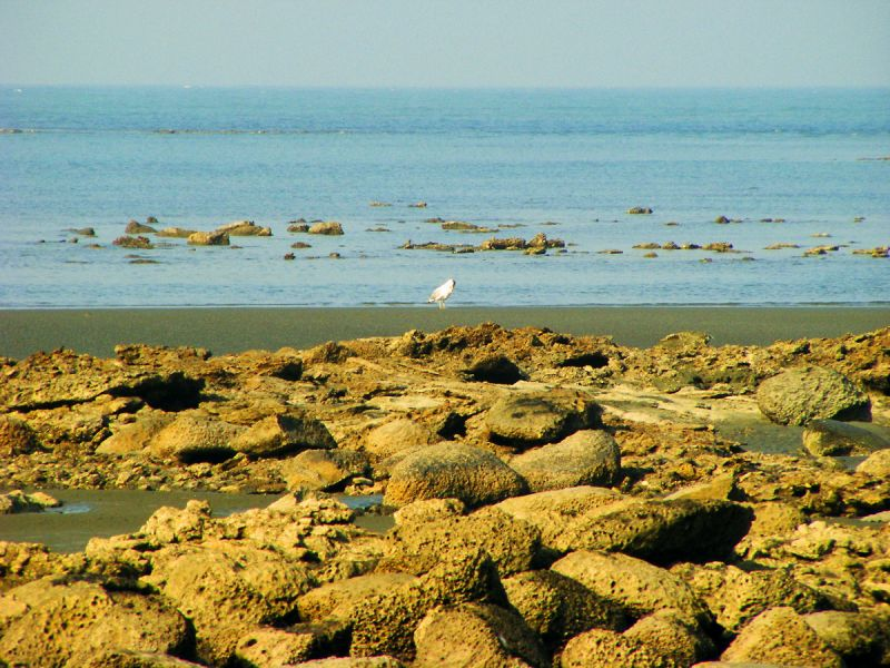 Saint Martin Island FS DX News