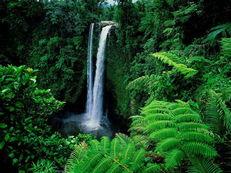 Upolu Island Samoa 5W0BOB Fuipisia Falls.