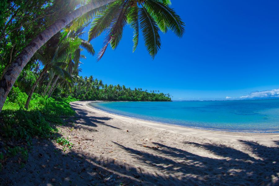 Samoa 5W0XG DX News White sandy beaches and coconut palms.