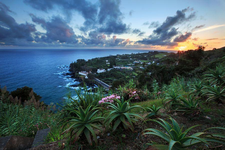 Sao Miguel Island Azores CT8/F5IRO Sunset over Aloe Vera Plants.