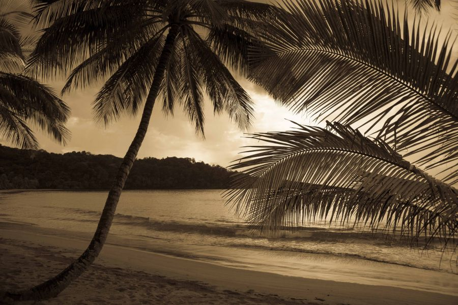 Sao Tome and Principe S9BT S9WL Bom Bom Resort, Principe Island.