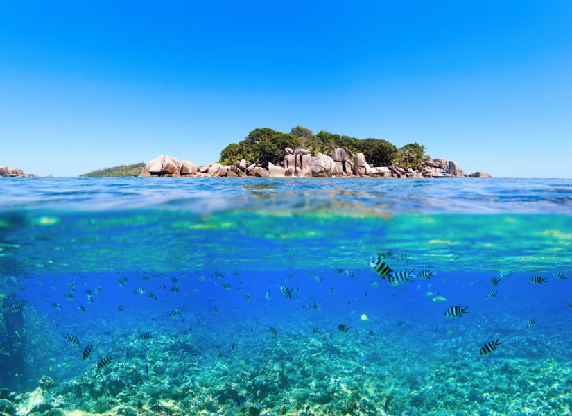 Seychelles S79CD Under and above water.