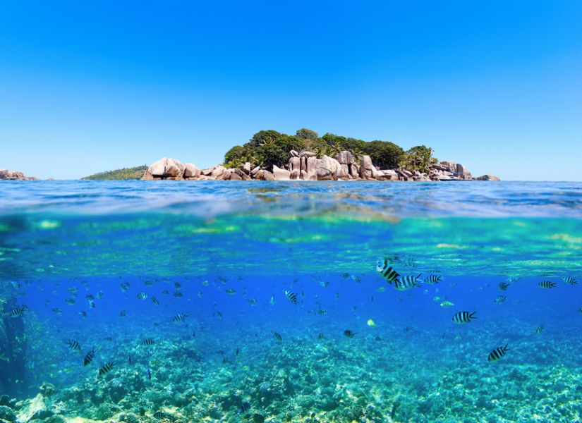 Seychelles Islands S79LCA Tourist attractions Under and above water