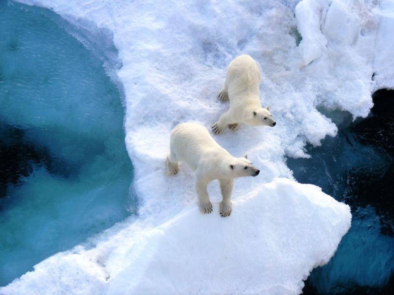 Spitsbergen Archipelago JW/M1ACB DX News