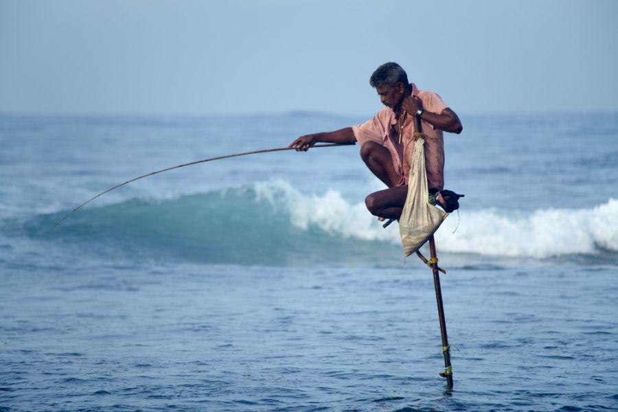 Шри Ланка 4S7DLG Туристические достопримечательности Необычный способ рыбалки.