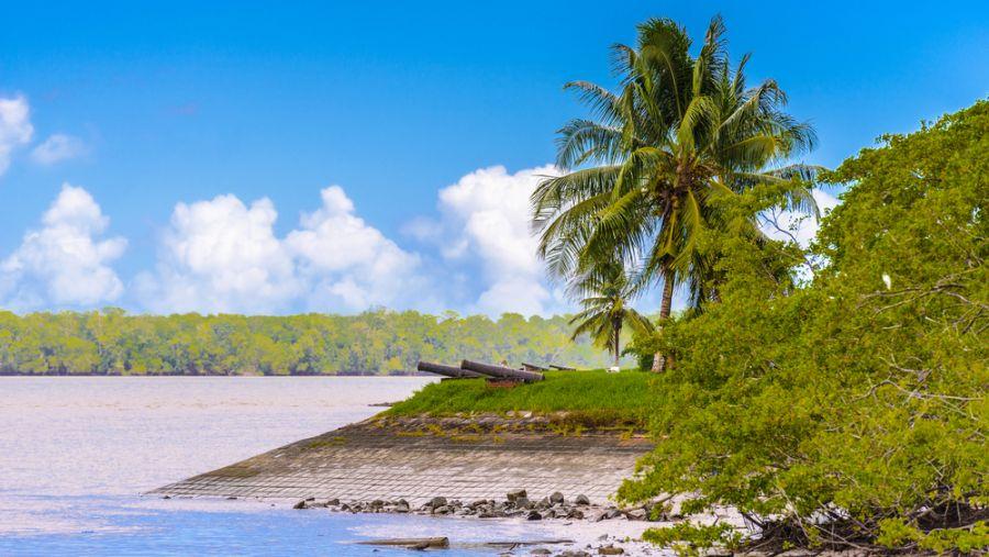Суринам PZ5W DX Новости Пушки на берегу реки Суринам