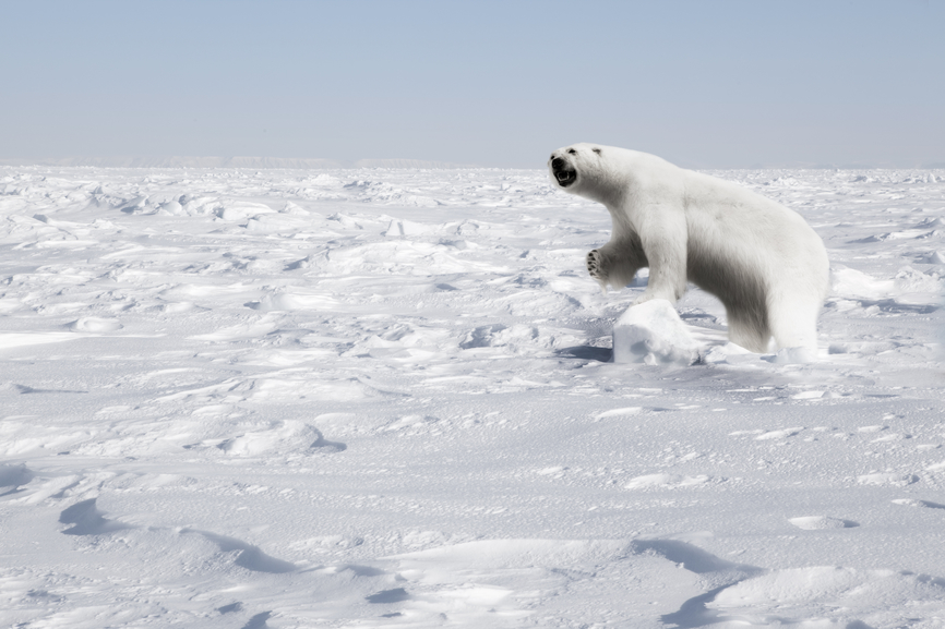 Svalbard JW9VKA