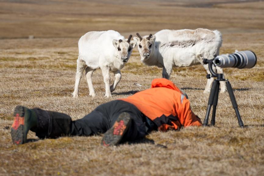 Svalbard JW/DL2JRM Tourist attractions