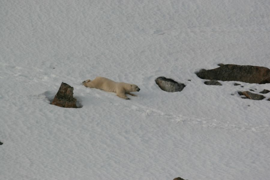 Svalbard JW/LB2LG Tourist attractions
