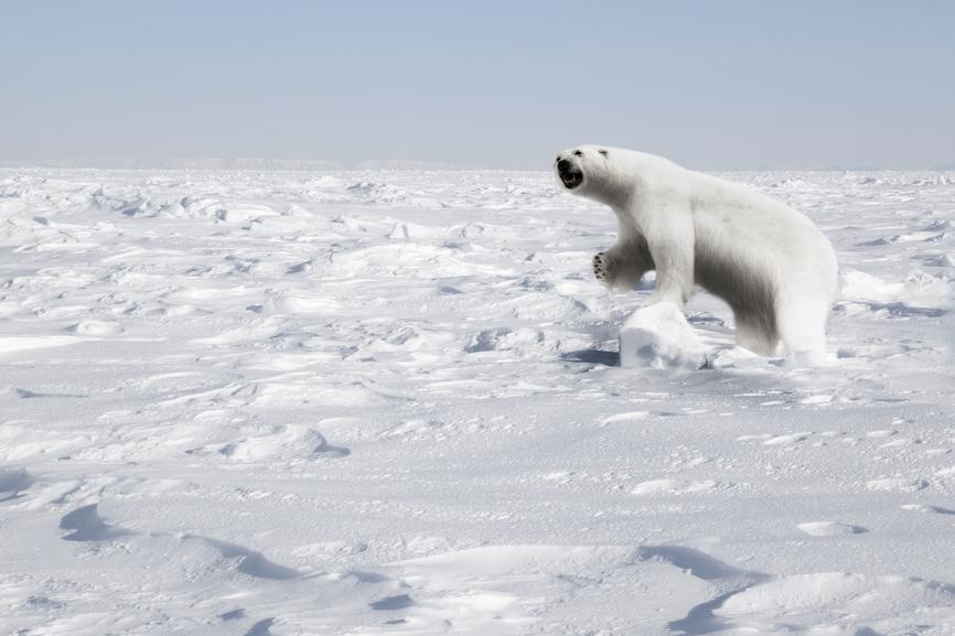 Svalbard JW/SQ9DIE Tourist attractions