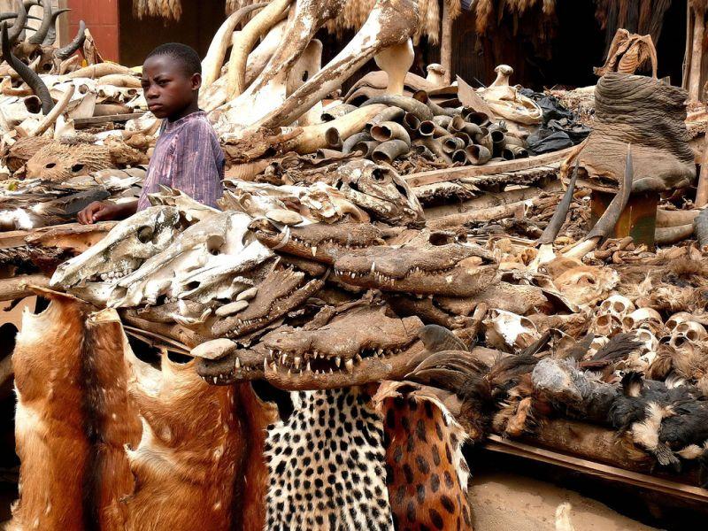 Togo 5V7D Tourist attractions spot Voodoo Fetish Market, Lomé.