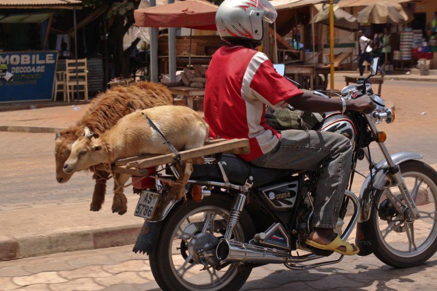 Togo 5V7SM DX News