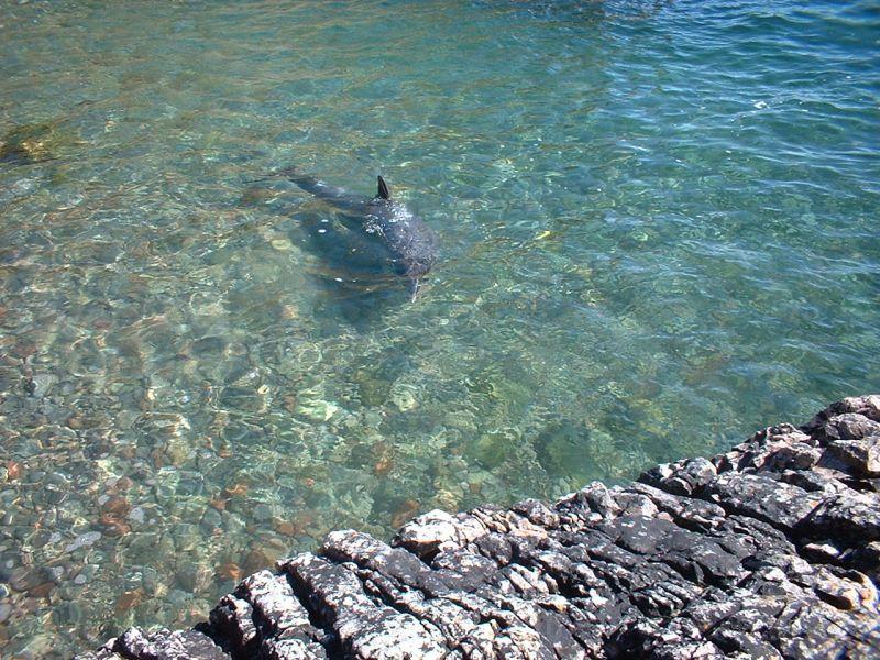 Tory Island EJ7NET Tourist attractions spot
