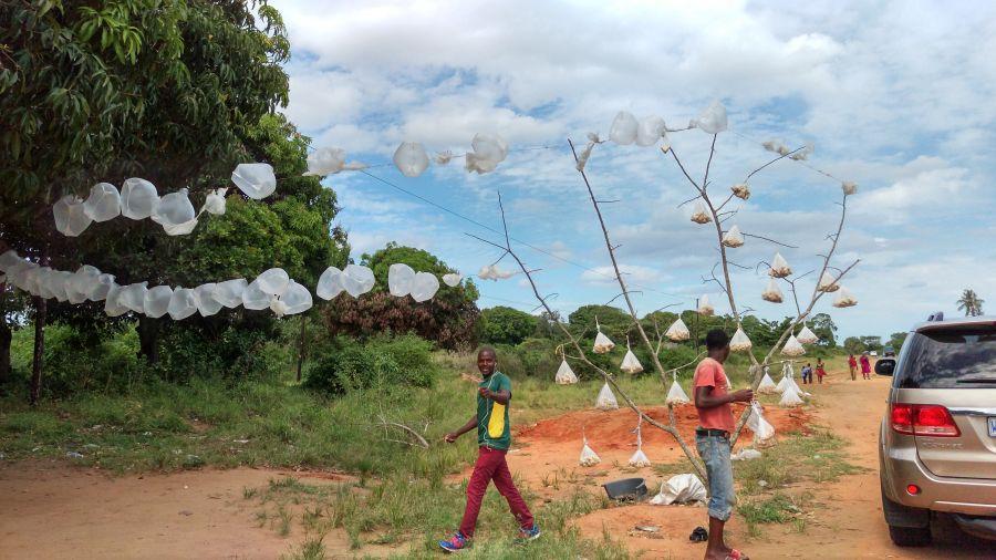 Мапуту Мозамбик Здесь продают орешки кешью