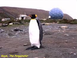 VK0EK Pinguinator Kevin