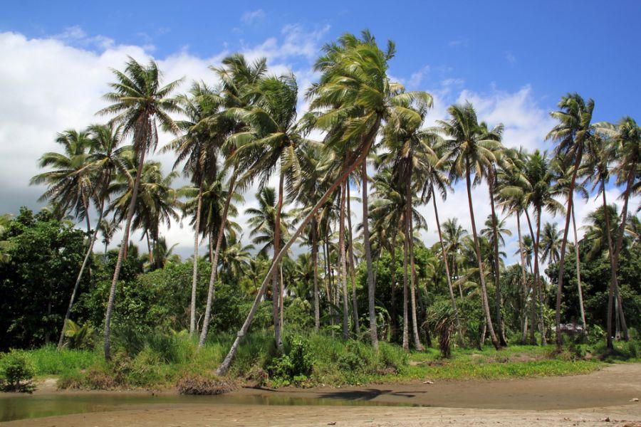 Vanuatu YJ0NH DX News