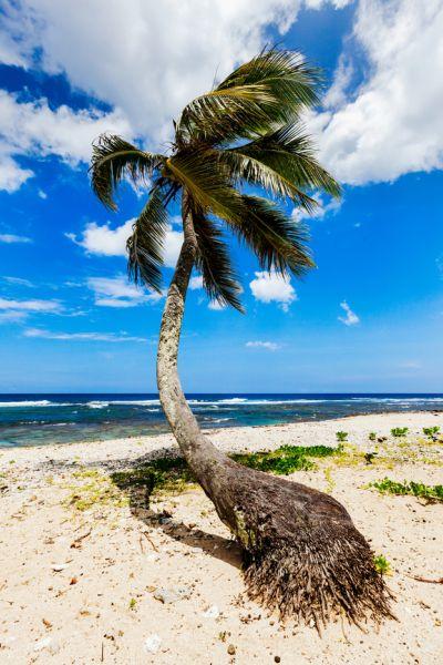 Vanuatu YJ0XG Tourist attractions