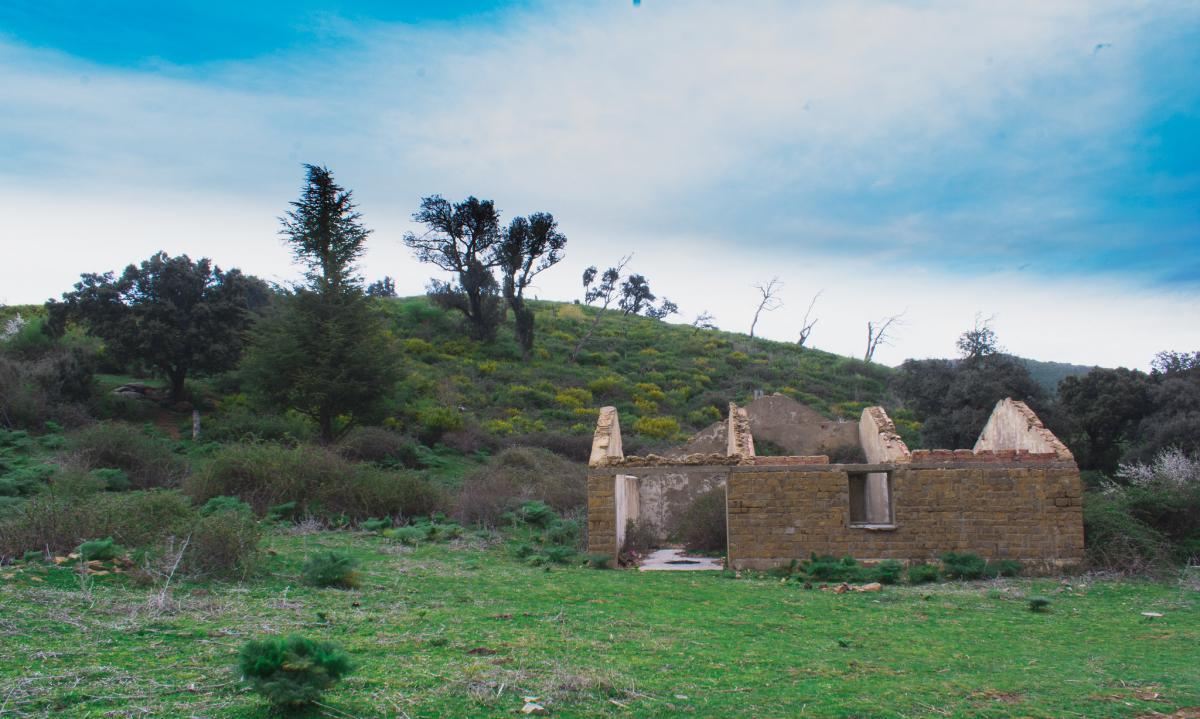 Алжир Заброшенный дом