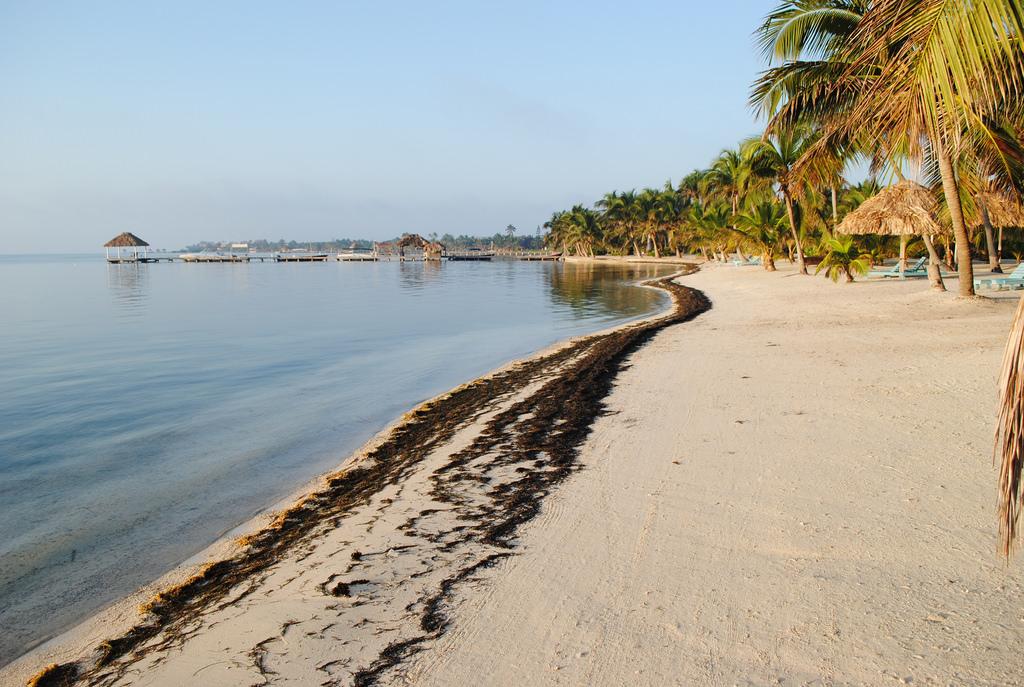 Остров Амбергрис Кайе V31CI Туристические достопримечательности Белиз