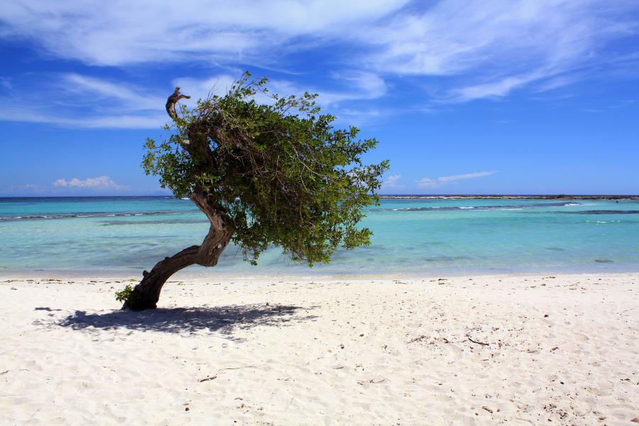 Aruba K3DMG/P4 Tourist attractions spot