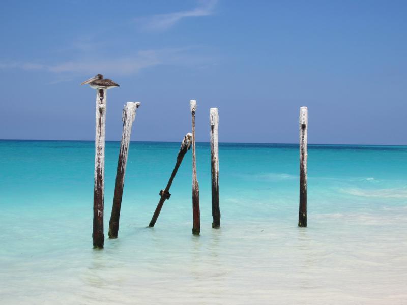 Aruba P4/K3DMG
