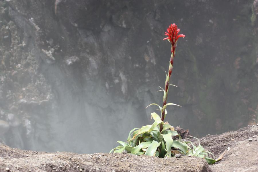 Остров Бас Тер FG/DL2AAZ Туристические достопримечательности Гваделупа