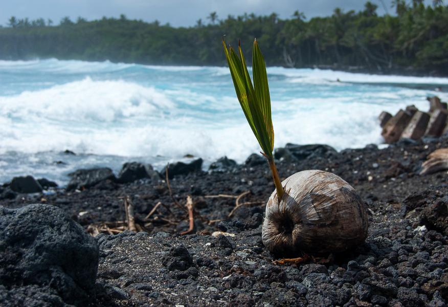 Остров Большой KE0GHU/KH6 Гавайи Похоики