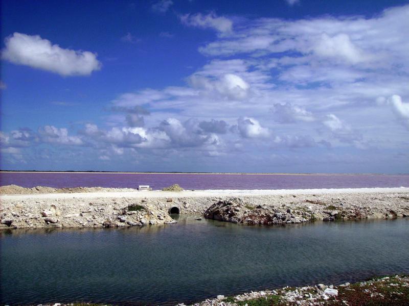 Bonaire Island PJ4/DJ2VO PJ4/DL3KMS DX News