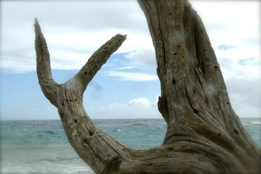 Bonaire Island PJ4/NA9Q DX News