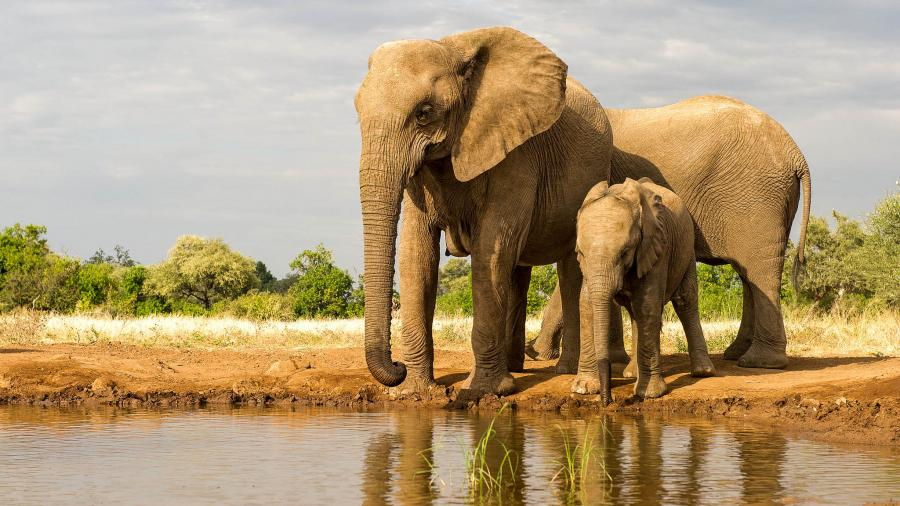 Botswana A25SL Tourist attractions spot