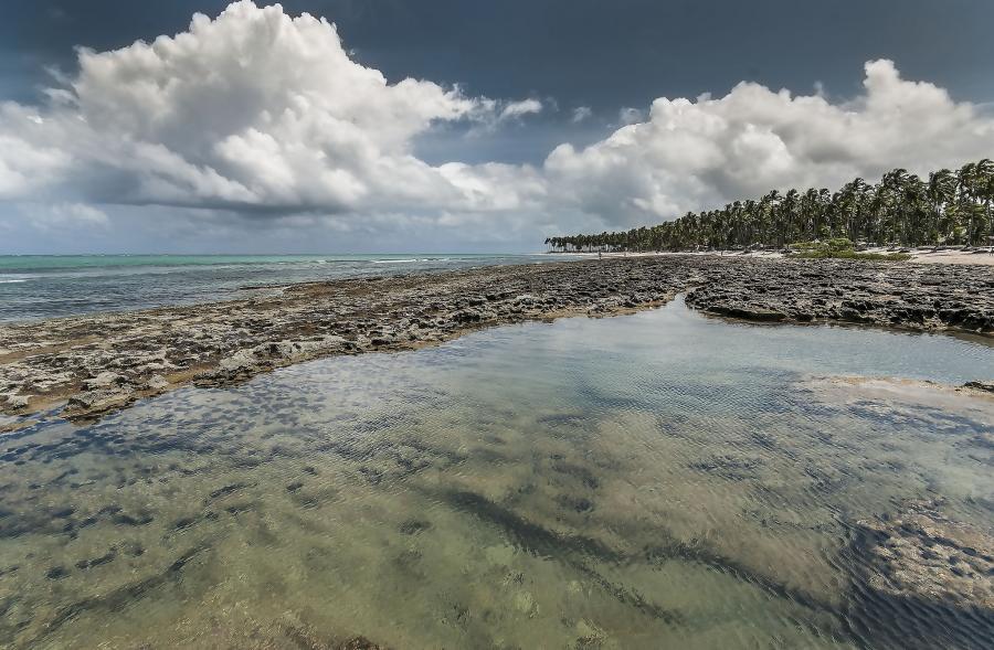 Brazil PX2V Tourist attractions spot Praia de Carneiros, Tamandare.