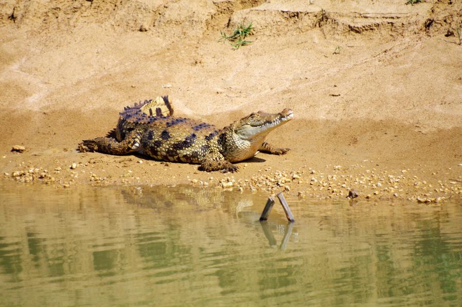 Буркина Фасо XT2AGI Туристические достопримечательности