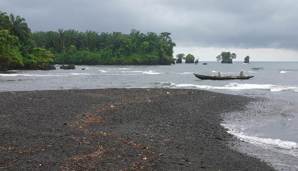 Cameroon TJ3PD
