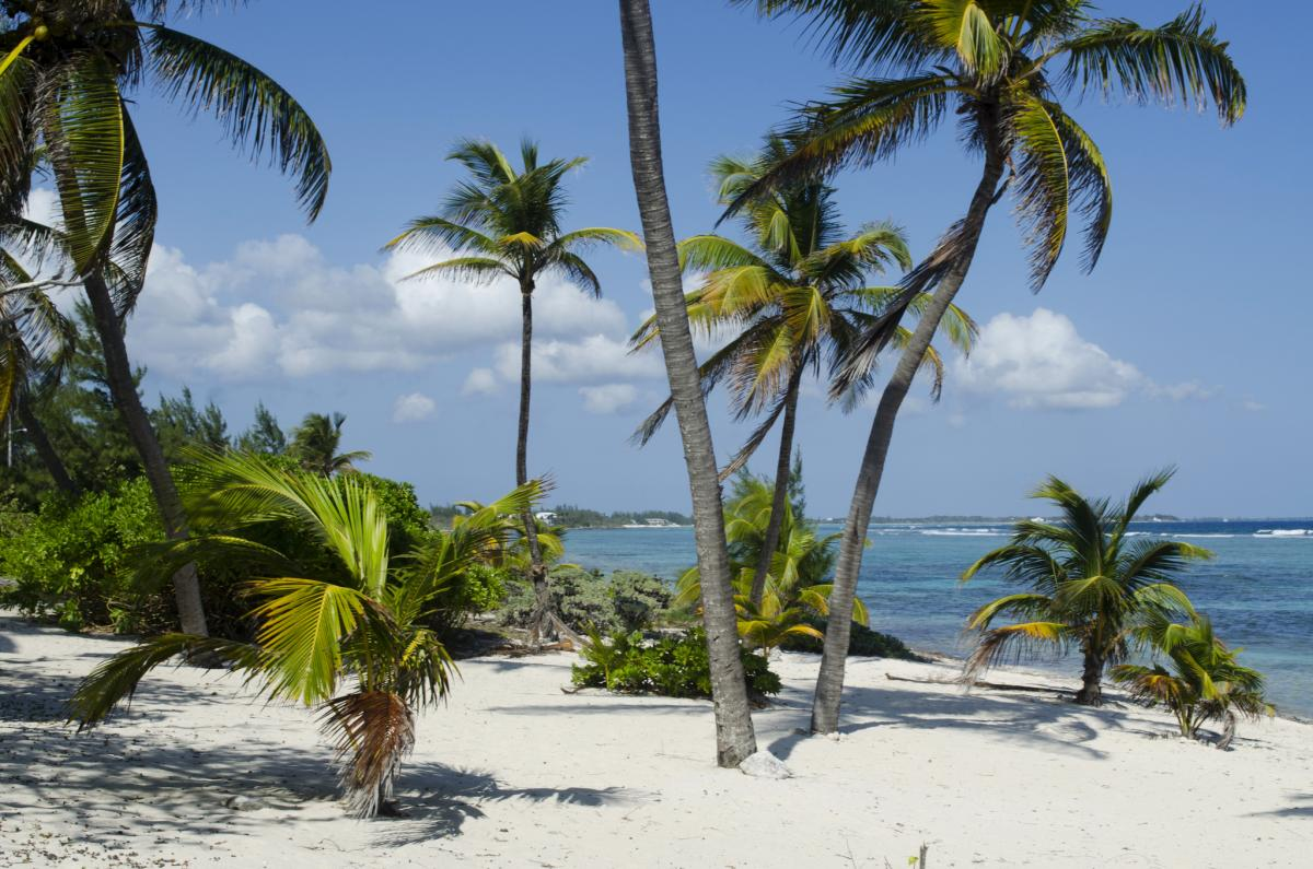 Каймановы острова ZF2AE ZF2AE/8 Частный пляж Остров Большой Кайман