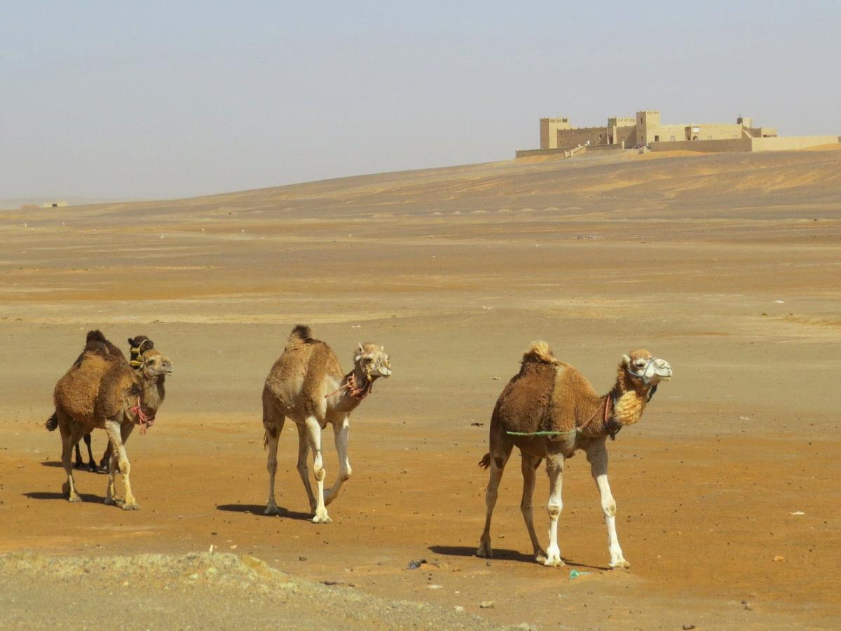 CN4P Merzouga, Morocco. Tourist attractions spot