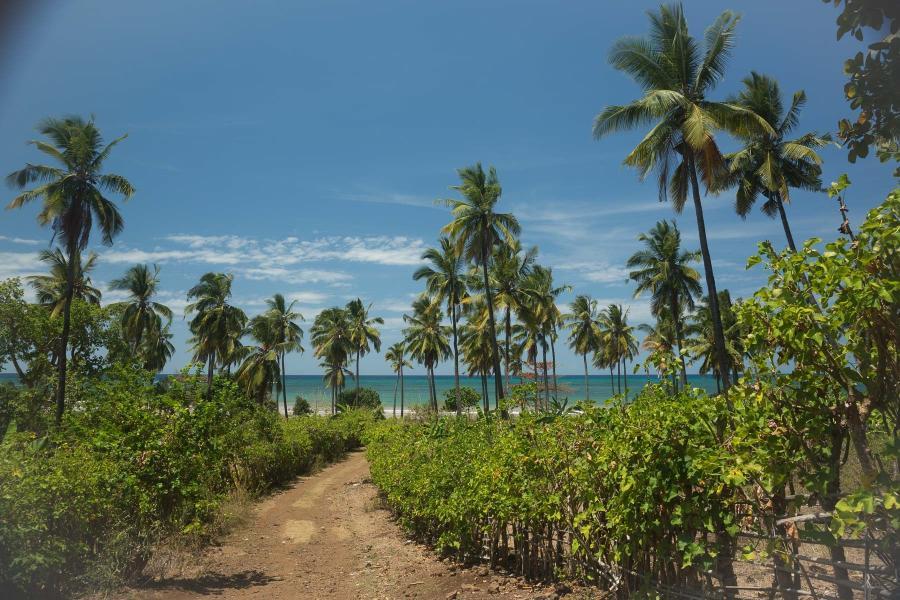 Comoro Islands D66D Image 6