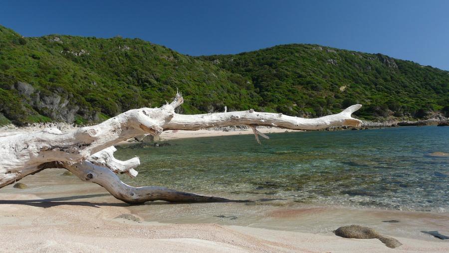 Corsica Island TK/F4CZU DX News