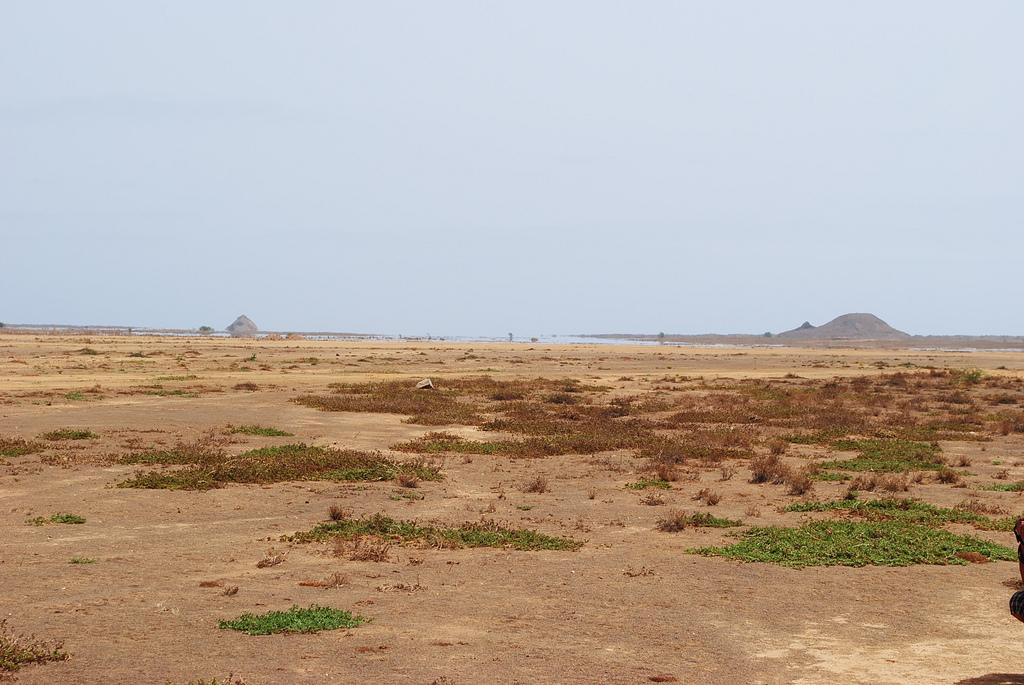 D4IA Sal Island, Cape Verde, Cabo Verde. DX News