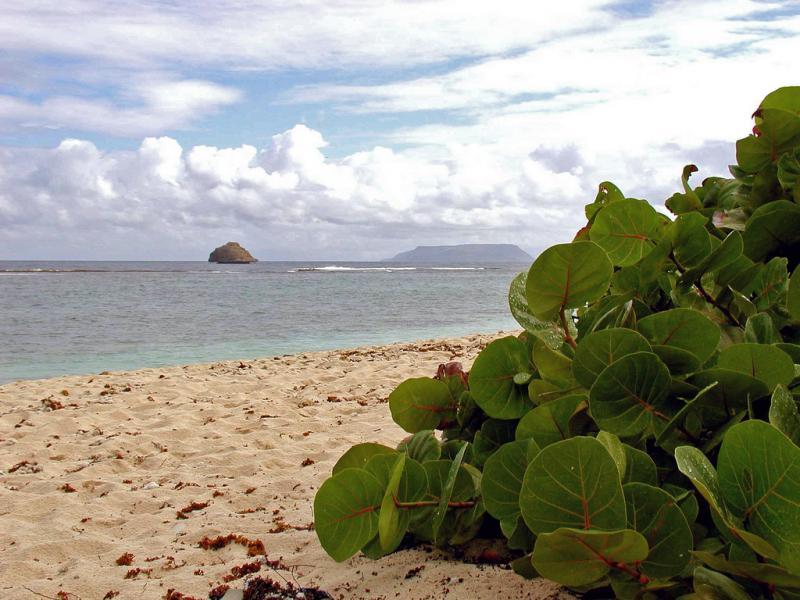 Остров Ла Дезирад TO7D FG/F6ITD Туристические достопримечательности