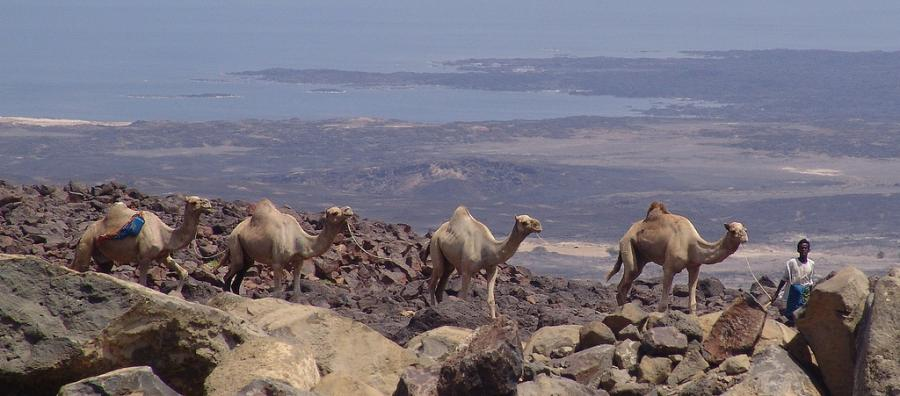 Djibouti J28ND Tourist attractions spot
