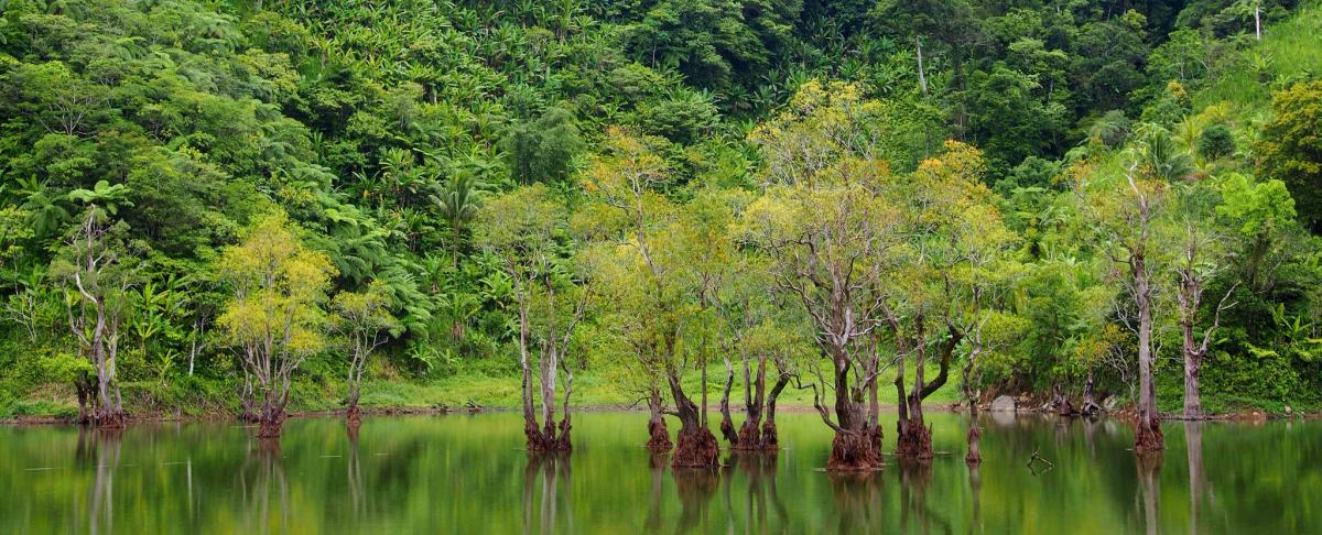 DU7/DF8AN Twin Lakes, Negros Island, Philippines. Tourist attractions spot