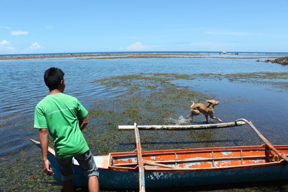 DU9/RZ3FW DU9/R4WAA Sarangani Island Sarangani Islands DX News