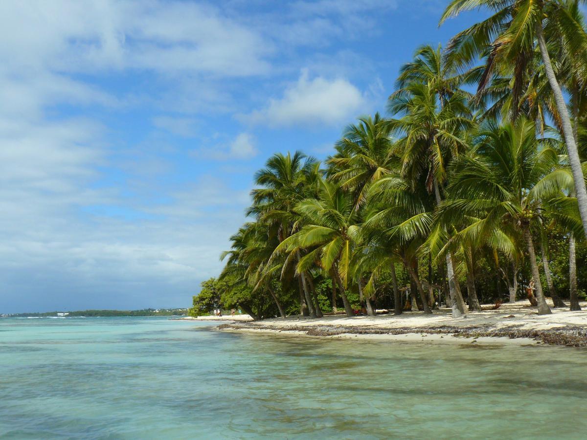 FG/F6BCW Iles des Saintes, Guadeloupe DX News