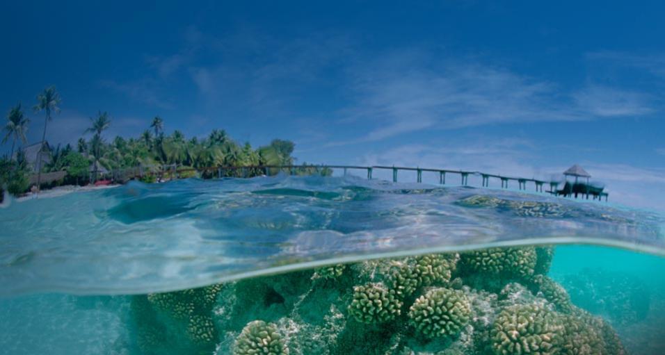 FO/JI1JKW Fakarava Atoll Tuamotu Archipelago, French Polynesia DX News