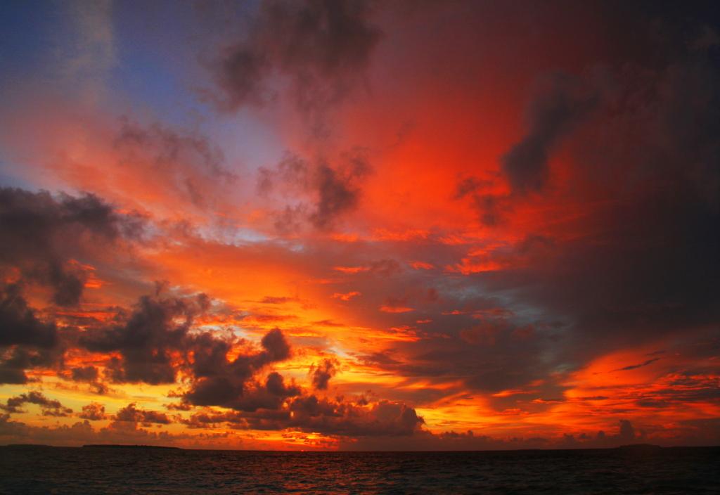 Fonimagoodhoo Island 8Q7PW DX News